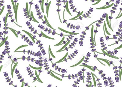 55485274-seamless-pattern-with-lavender-flowers-provence-style-romantic-background-in-french-retro-design-for-Stock-Photo